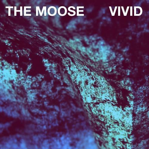 The Moose Vivid