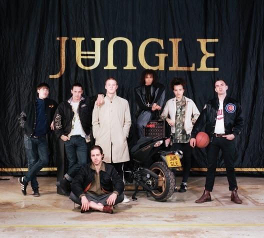 Jungle528x476
