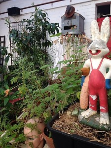 wallace and grommet rabbit