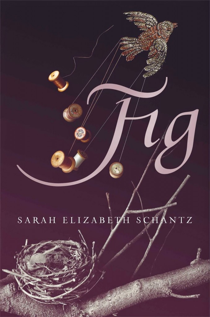 Fig cover