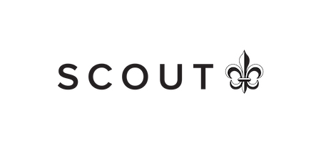 Scout banner